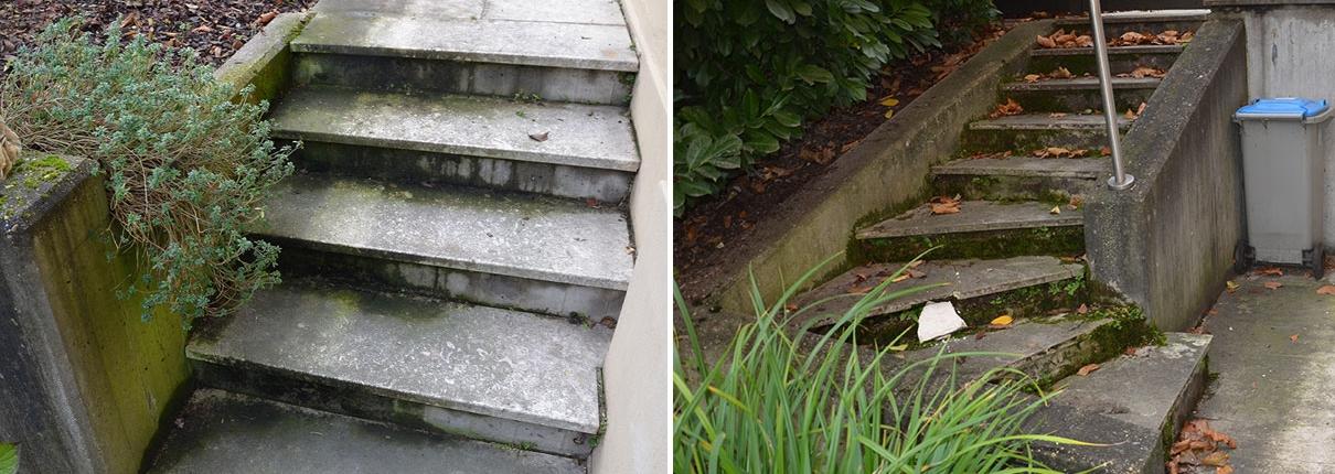 Sanierung und Umbau Villa Mannheim - Außenanlage