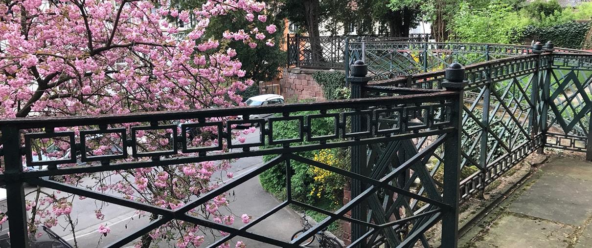 Restaurierung Geländer Viall Krehl in Heidelberg